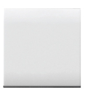 AVE Blank Insert Large - Features, Specifications - Domus Online India - Anchor by Panasonic