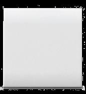 Blank Insert Large