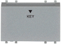 20A, Time Delay D.P Electronic Switch with Key Tag