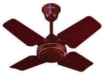 New Flyer-fancy ceiling fan