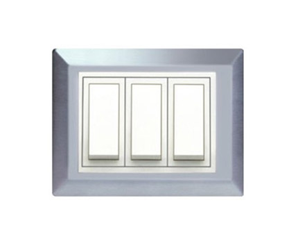 Roma Victorian SS-  Solid Metal Plate (with white frame)