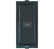 Roma Black,10AX, 1 Way Switch With Fan Mark