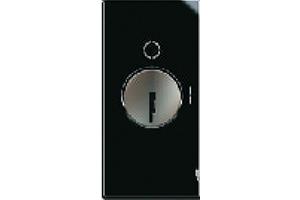 16 AX, 1 Way Double Pole Switch with Key