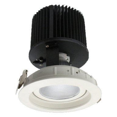 Down light Adjustable - 45W