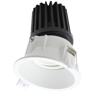 Trim Less Down Light - Adjustable - 12W