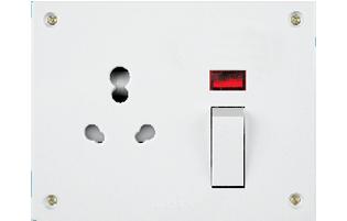 Uni. S.S.Neon Combined(4 fixing holes)