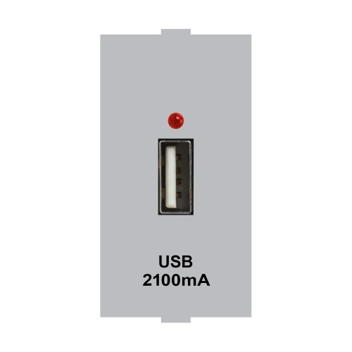 USB Charger (Silver)